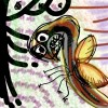 insectoplanta