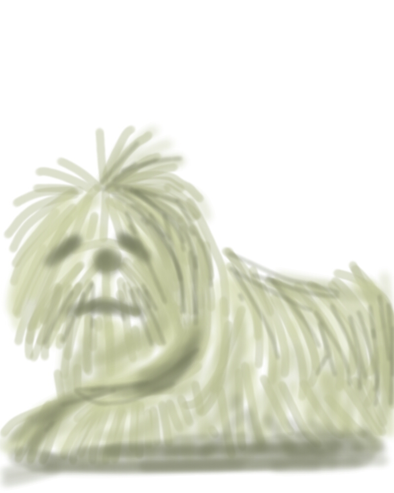 dogie