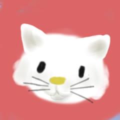 Kitty ma
